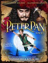 Peter Pan (2014)